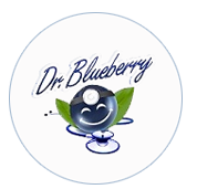 Dr. Blueberry